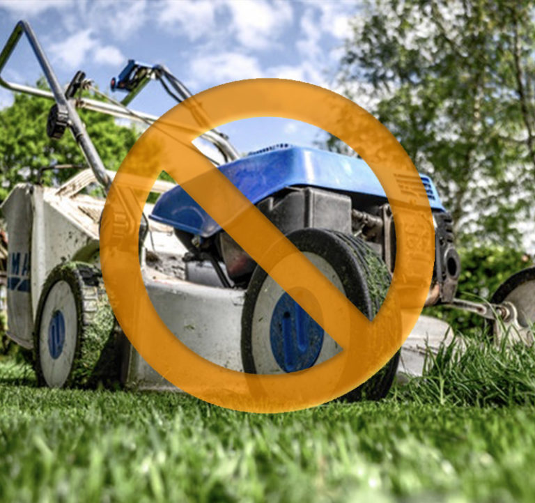 No mowing or trimming, artificial turf